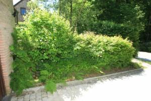 Am nagement ext rieur espaces verts cr ation jardin sprl for Entretien jardin gembloux